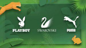شناخت مشتری در طراحی لوگو حیوانات
