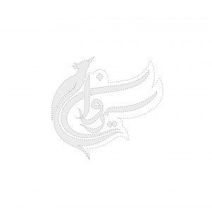 طراحی لوگو پرنده